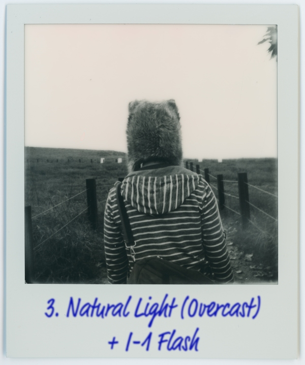Impossible I-Type Films (Image Quality and Comparison) - via miu vermillion photography blog