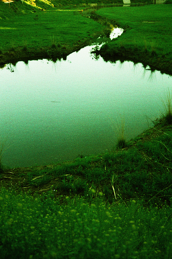 Lomography X-Pro 200 ISO 35mm via miu vermillion blog
